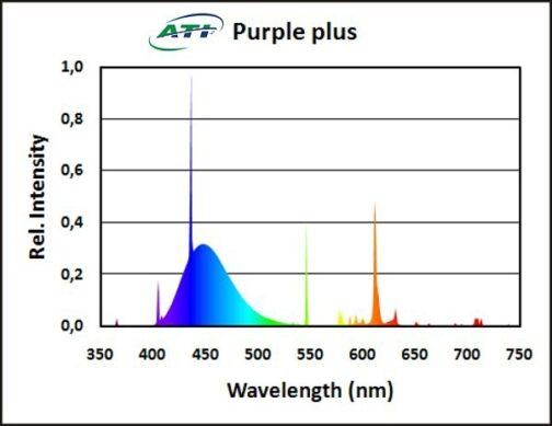 ATI Purple plus 54W