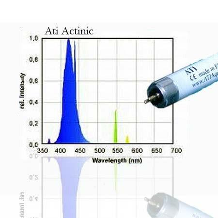 ATI Actinic blue 80W