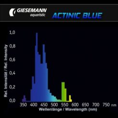 D-D Giesemann Actinic plus/Actinic blue 54 W