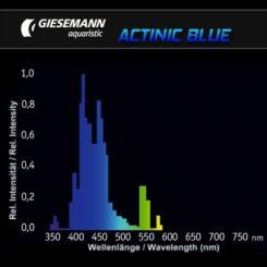 D-D Giesemann Actinic plus/Actinic blue 80W