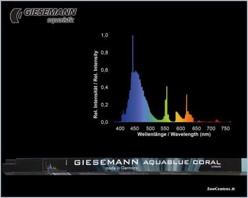 Giesemann Aquablue coral 54W