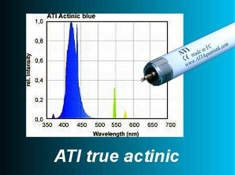 ATI Actinic blue 39W