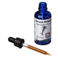 DVH Ocean Prime  Copepods 500-700 micron